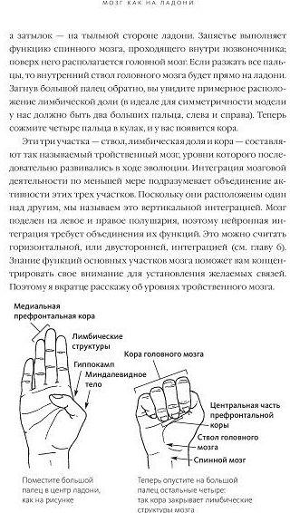 Фрагмент книги Майндсайт